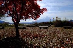 湖畔の秋4