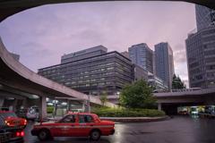 BDC_9142 Shinjuku Violet