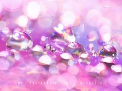 雫の宝石*