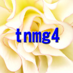 tnmg4