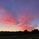 日の出ハンター